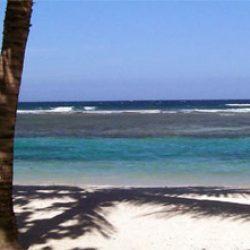 acc_beach