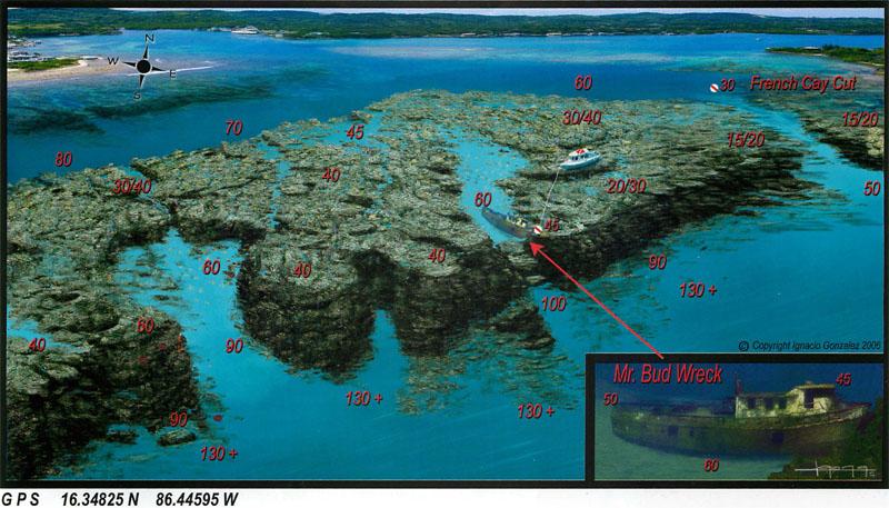Roatan dive sites subway shipwreck adventures - Roatan dive sites ...